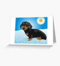 Daisy dachshund Greeting Card
