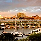 Woolloomoolloo Bay Sydney Australia by Raoul Isidro