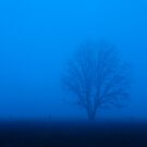 Blue Dreaming by Peter Doré