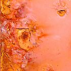 Orange Crush by Jessica Dzupina