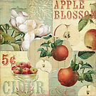 Apple Blossoms IV by mindydidit