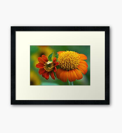 The Bonding of Mother and Child Framed Print
