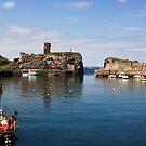 Dunbar Harbour by Lynne Morris