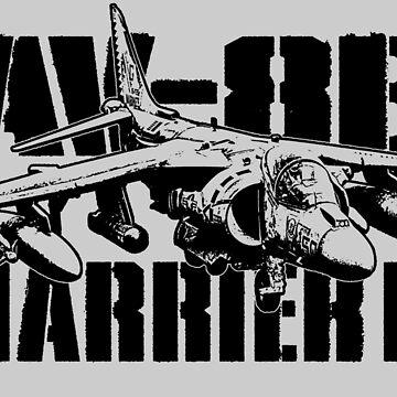 AV-8B Harrier II by deathdagger