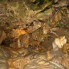 Howe Caverns- New York by Neoran
