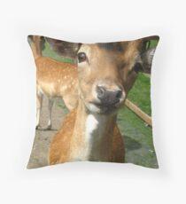Hi Diana remember me! Throw Pillow