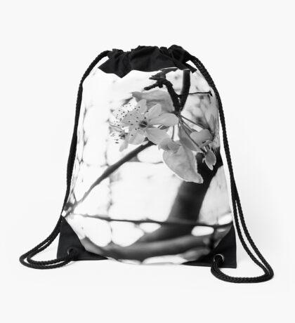 Brilliance Drawstring Bag