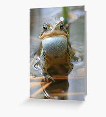Spring Chorus - American Toad Greeting Card