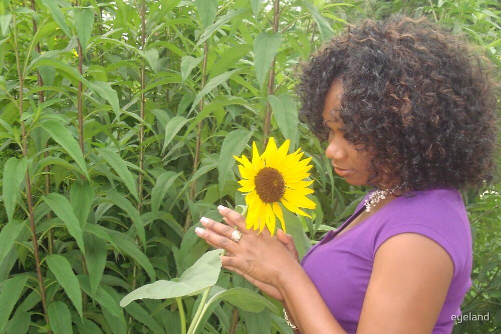 Sunflower showdown by eyeland