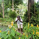 Photographer in the Jungle by Rosalie Scanlon