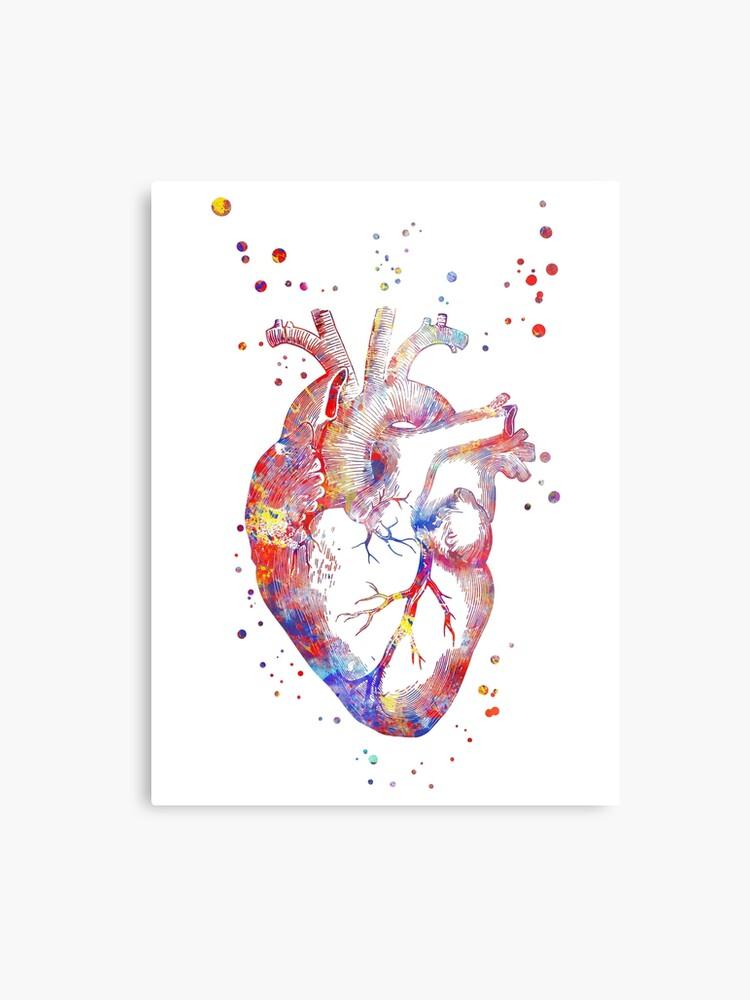 Human Heart Heart Anatomy Medical Art Watercolor Heart Heart Print Abstract Heart Metal Print