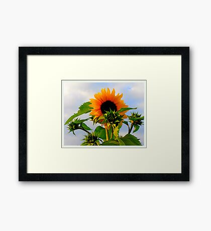 """My Love Is Waiting featured in """"I got the Music in me"""" Framed Print"""