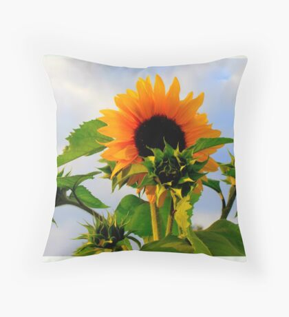 """My Love Is Waiting featured in """"I got the Music in me"""" Throw Pillow"""