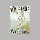Weird Whitstable Wildlife by Quinton Winter