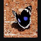 THE  AFRICAN BUTTERFLY  SERIES TEESHIRT by Magriet Meintjes