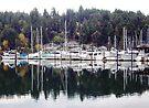 Sailboat Harbor near Tacoma by John Carpenter