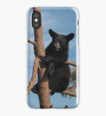Black Bear Cub Just Hanging Out in a Tree iPhone Case