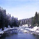 Majestic Maligne River by Graeme Wallace