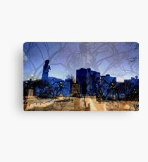 Mysterious!!! Canvas Print