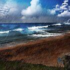 Pirate Cove by Rhonda Strickland