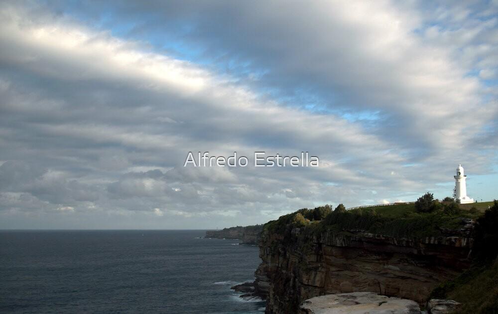 Solitary Splendor by Alfredo Estrella
