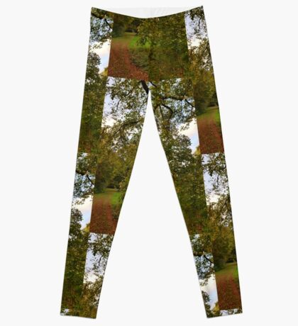 Boomstam 4 Leggings