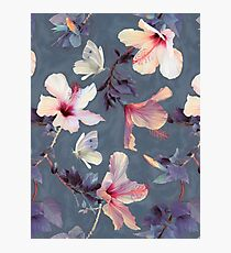 Butterflies and Hibiscus Flowers - a painted pattern Photographic Print