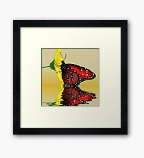 Butterfly Reflection Framed Print