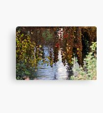 water reflection on river Canvas Print