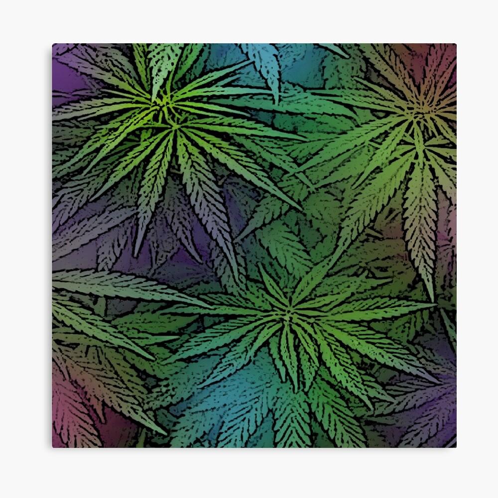 Green Purple and Blue Cannabis Marijuana Pot Ganja 420 Design Canvas