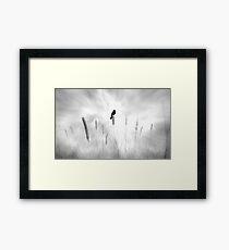 omen Framed Print