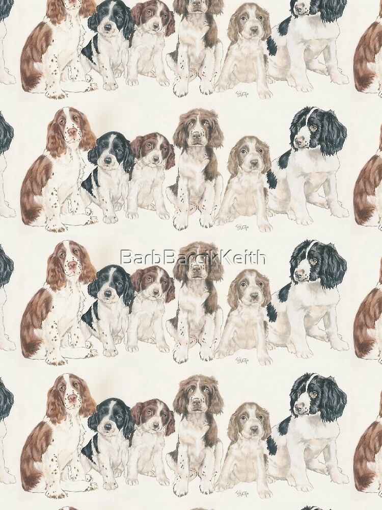 English Springer Spaniel Puppies by BarbBarcikKeith