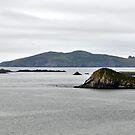 Great Blasket Island in the mist, Kerry, Ireland by Pat Herlihy