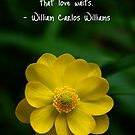 Yellow Petals - card with quote* by Tara Wagner