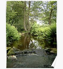 Hebble brook - Mixenden, Halifax, UK Poster