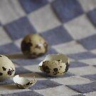 Quaill eggs by Elma Claassen