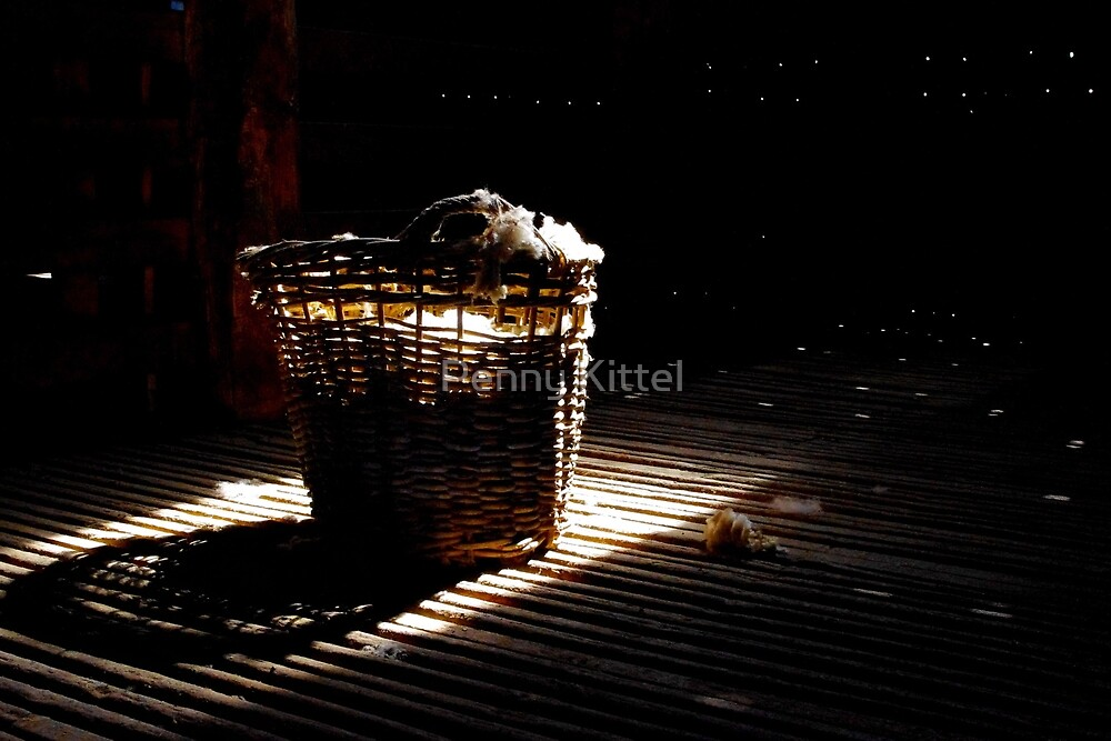 A basket of light by Penny Kittel