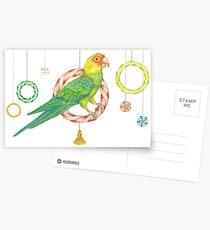 Candy Carolina Parakeet Postcards