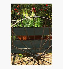 Flowers In The Cart Photographic Print