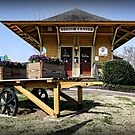 Train Depot Visitor's Center by Patricia Montgomery