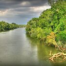 Coosa River by Patricia Montgomery