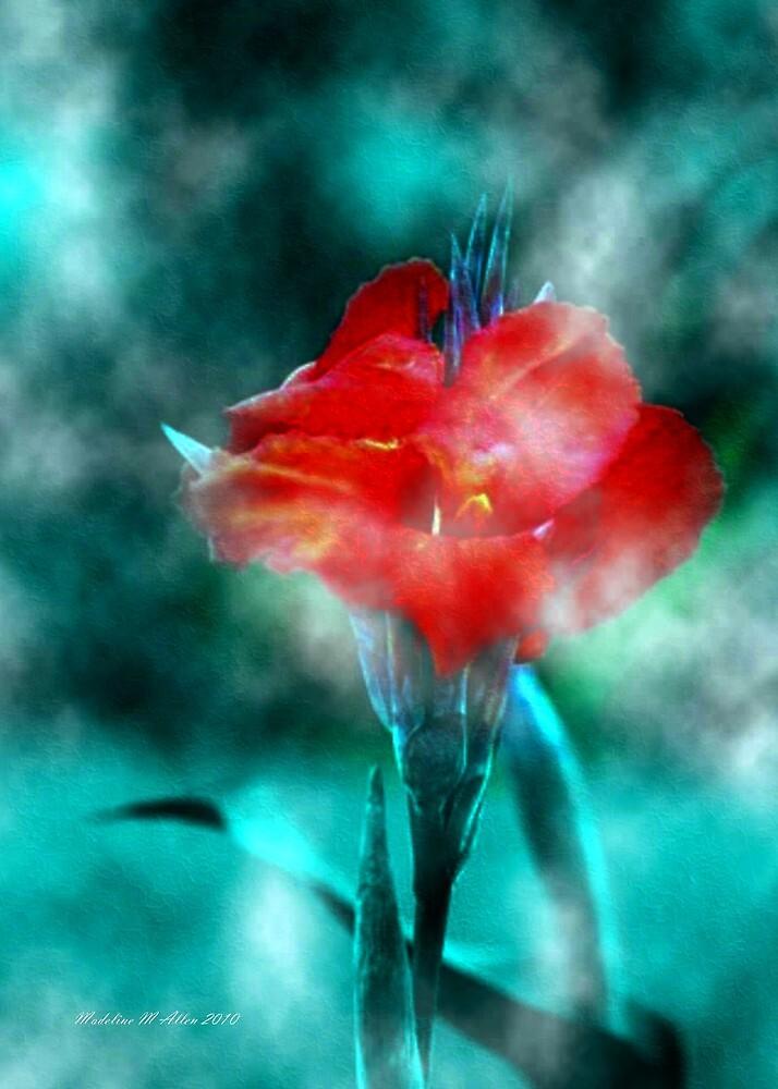 ~ Calla In The Mist ~ by Madeline M  Allen
