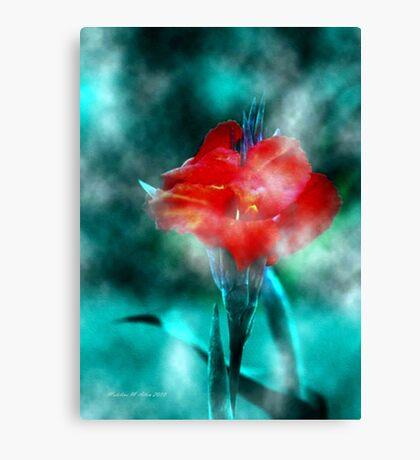 ~ Calla In The Mist ~ Canvas Print