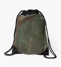 Walk in the Woods (16x9) Drawstring Bag