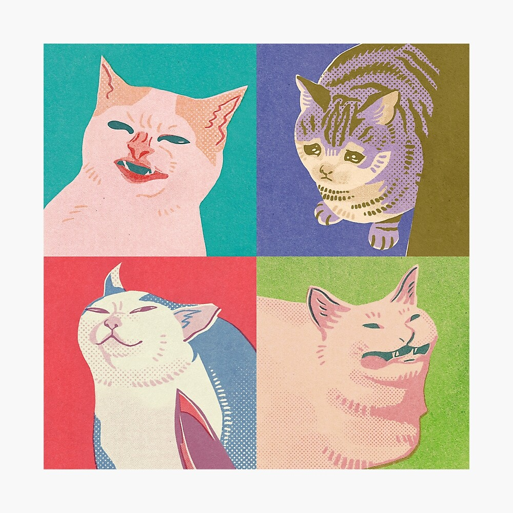 Four Meme Cats of the Apocalypse Photographic Print