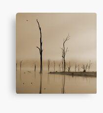 Fog, Dawn Canvas Print