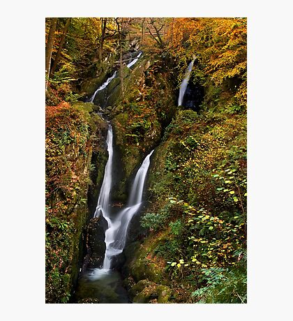 Stock Ghyll Force - The Lake District Photographic Print