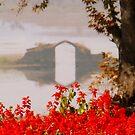 Camel Bridge by Brian Bo Mei