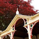 The Pavilion Roof Gets A New Lick Of Paint! by Sandra Cockayne