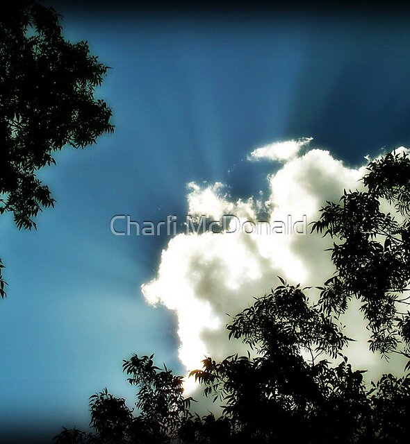 Clouds by Charli McDonald